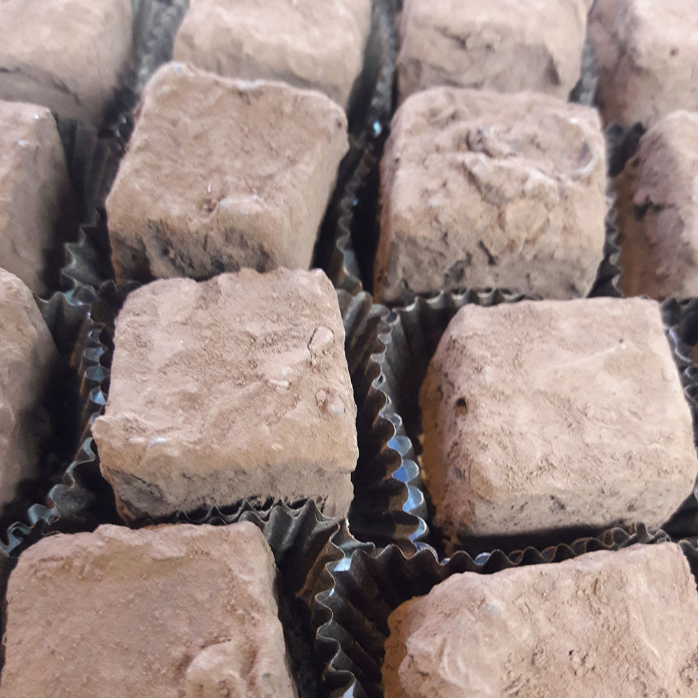 Dark Belgian Truffle Rolled in Cocoa Powder